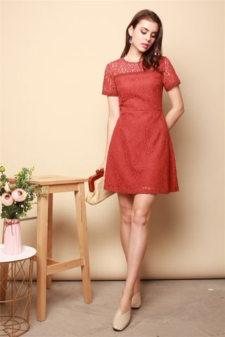 ACW Sleeved Lace Swing Dress in Terracotta
