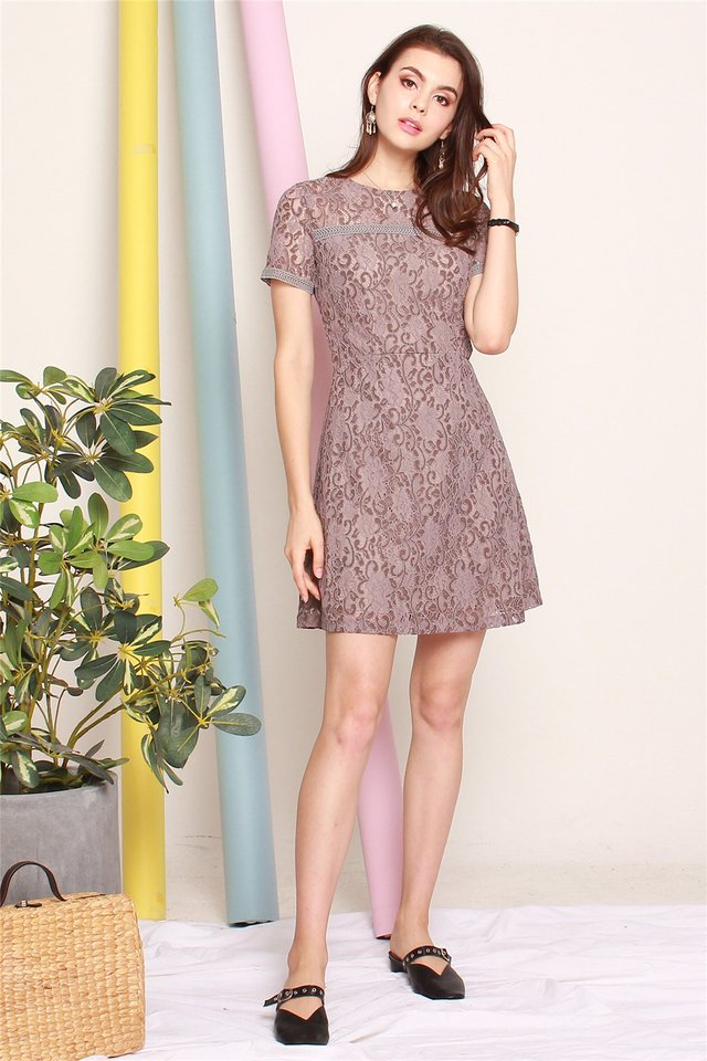 ACW Sleeved Lace Swing Dress in Cocoa Brown