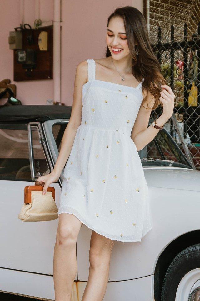 ACW Swiss Dot Embroidery Swing Dress
